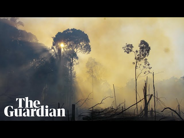 Aerial footage shows fires in Brazil's Amazon