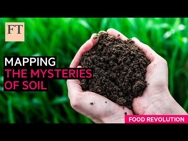 Metagenomics: mapping the mysteries of soil  Food Revolution