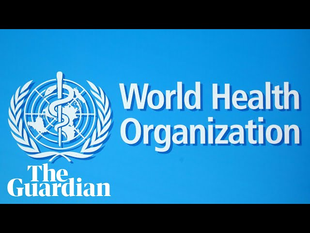 Coronavirus: WHO holds briefing on pandemic – watch live
